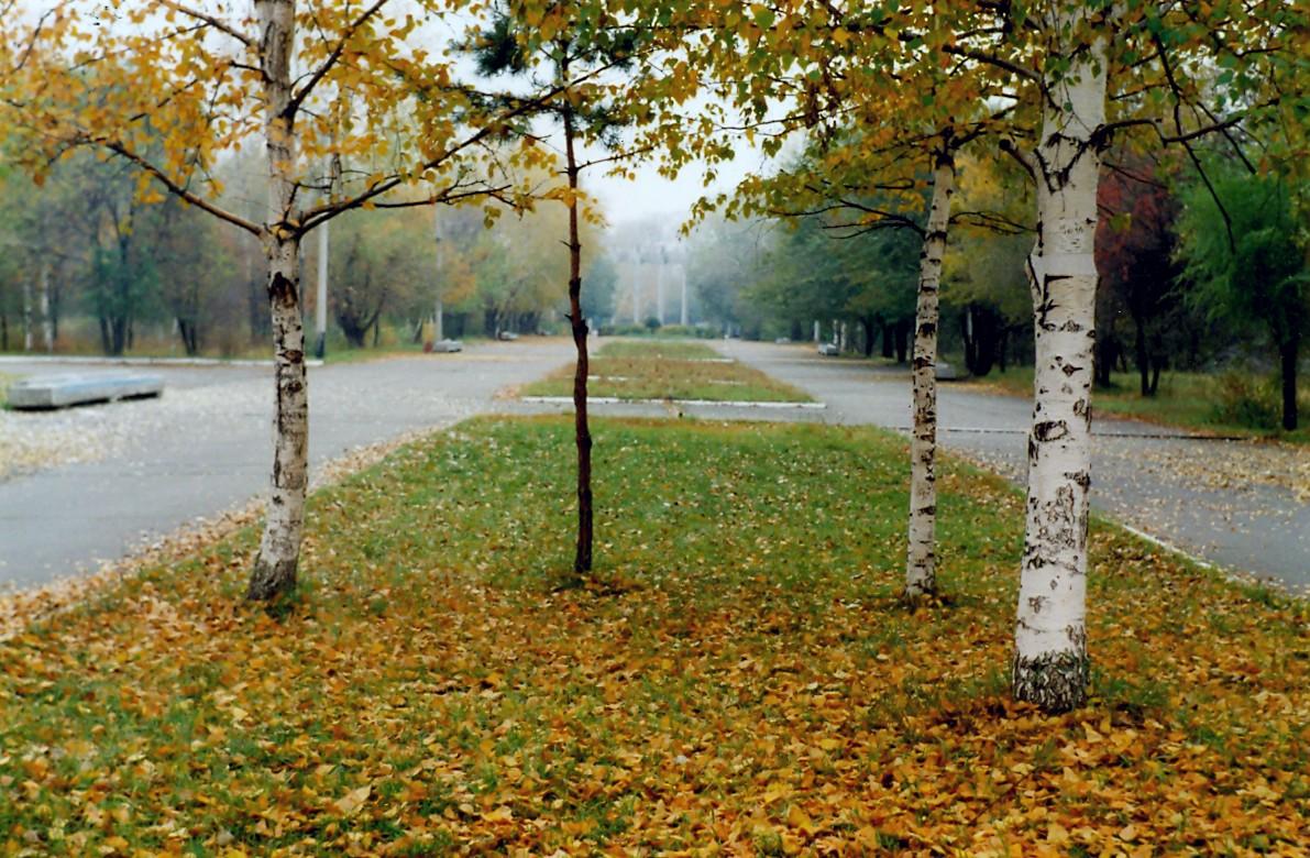 Куртка весна осень  купить в Абакане цена 700 руб